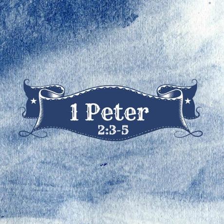 1Peter23-5